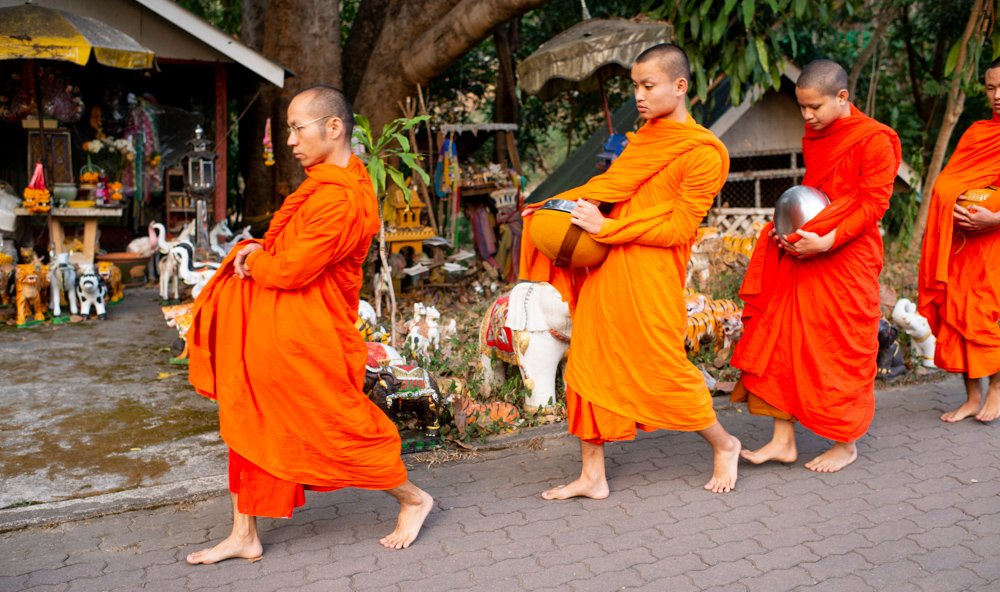 What To Do In Chiang Mai In 3 Days [the best ideas] Morning Alms Monks in Chiang Mai